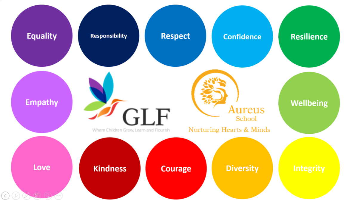 Aureus 12 core values
